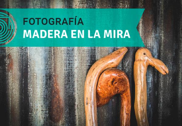 concursos_epe_foto